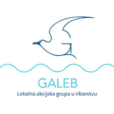galeb-flag